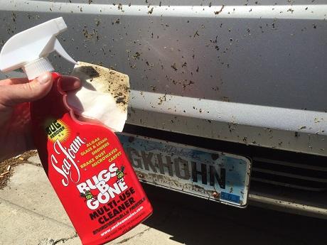 Sea Foam Sales Company Try It Use Bugs B Gone To Clean